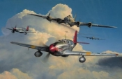 Red Tail Escort (Tuskegee Airmen)